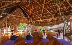 Yoga class at the Treehouse